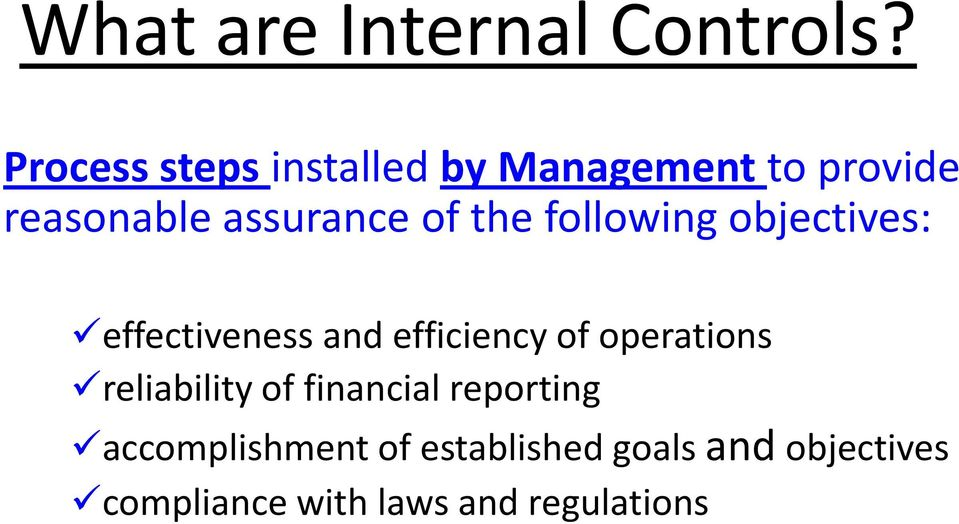 the following objectives: effectiveness and efficiency of operations
