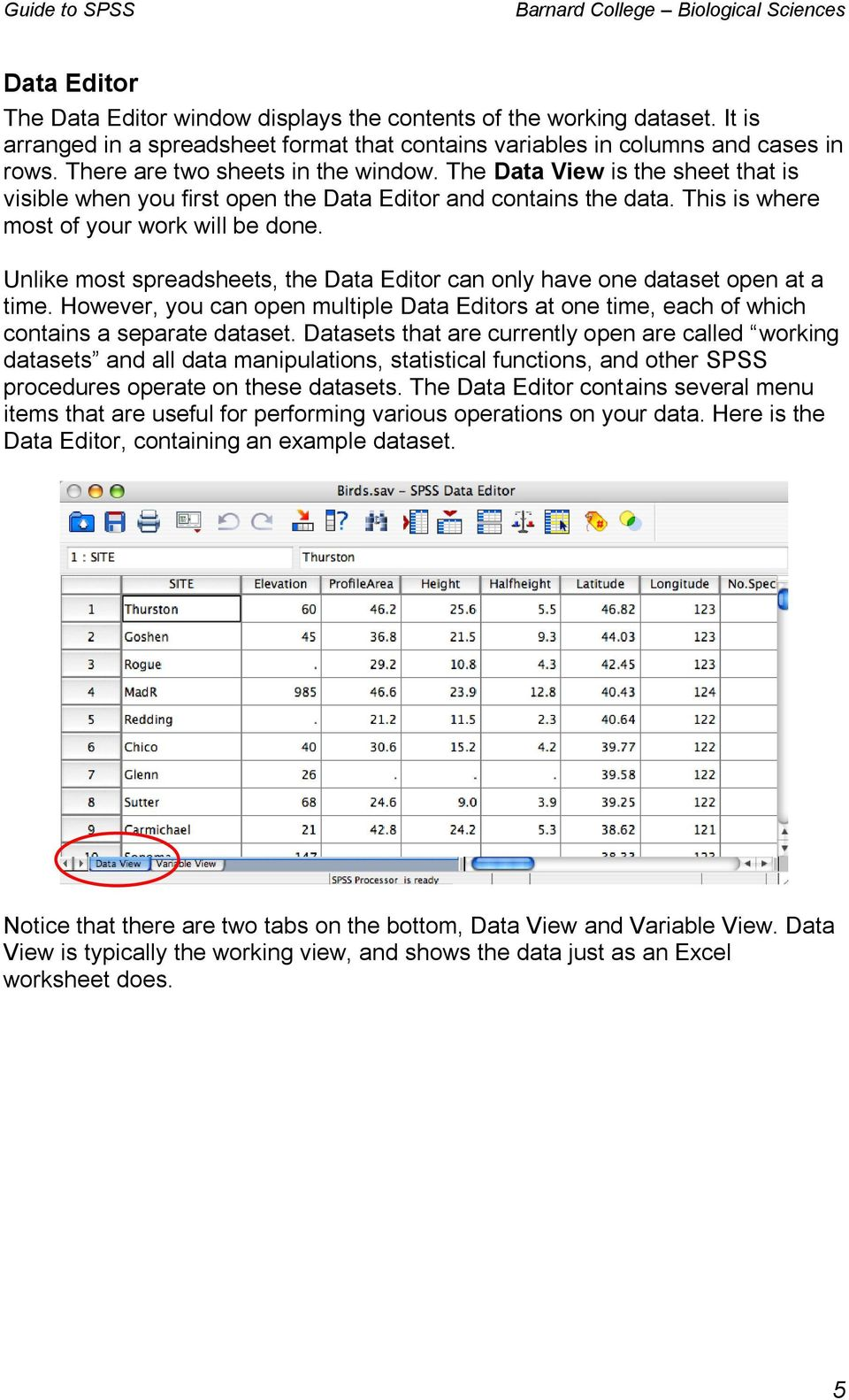 Unlike most spreadsheets, the Data Editor can only have one dataset open at a time. However, you can open multiple Data Editors at one time, each of which contains a separate dataset.