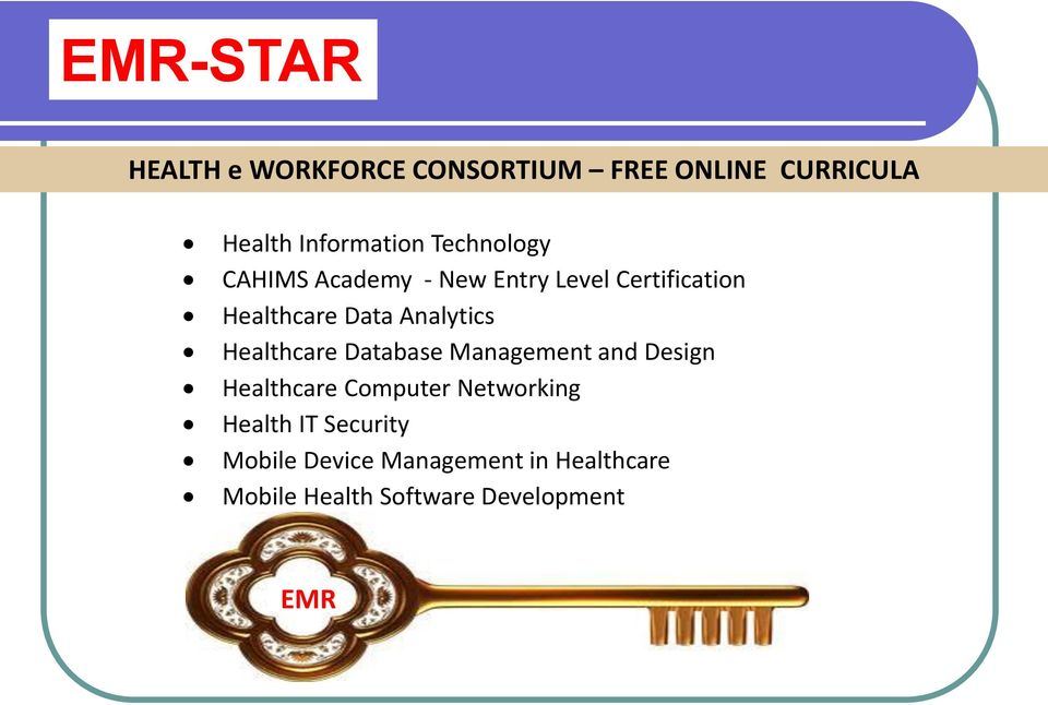 Analytics Healthcare Database Management and Design Healthcare Computer