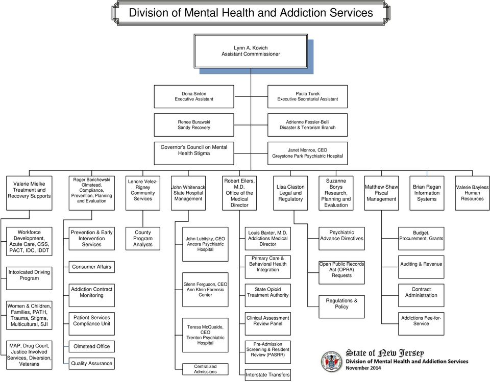 Council on Mental Health Stigma Janet Monroe, CEO Greystone Park Psychiatric Hospital Valerie Mielke Treatment and Recovery Supports Roger Borichewski Olmstead, Compliance, Prevention, Planning and