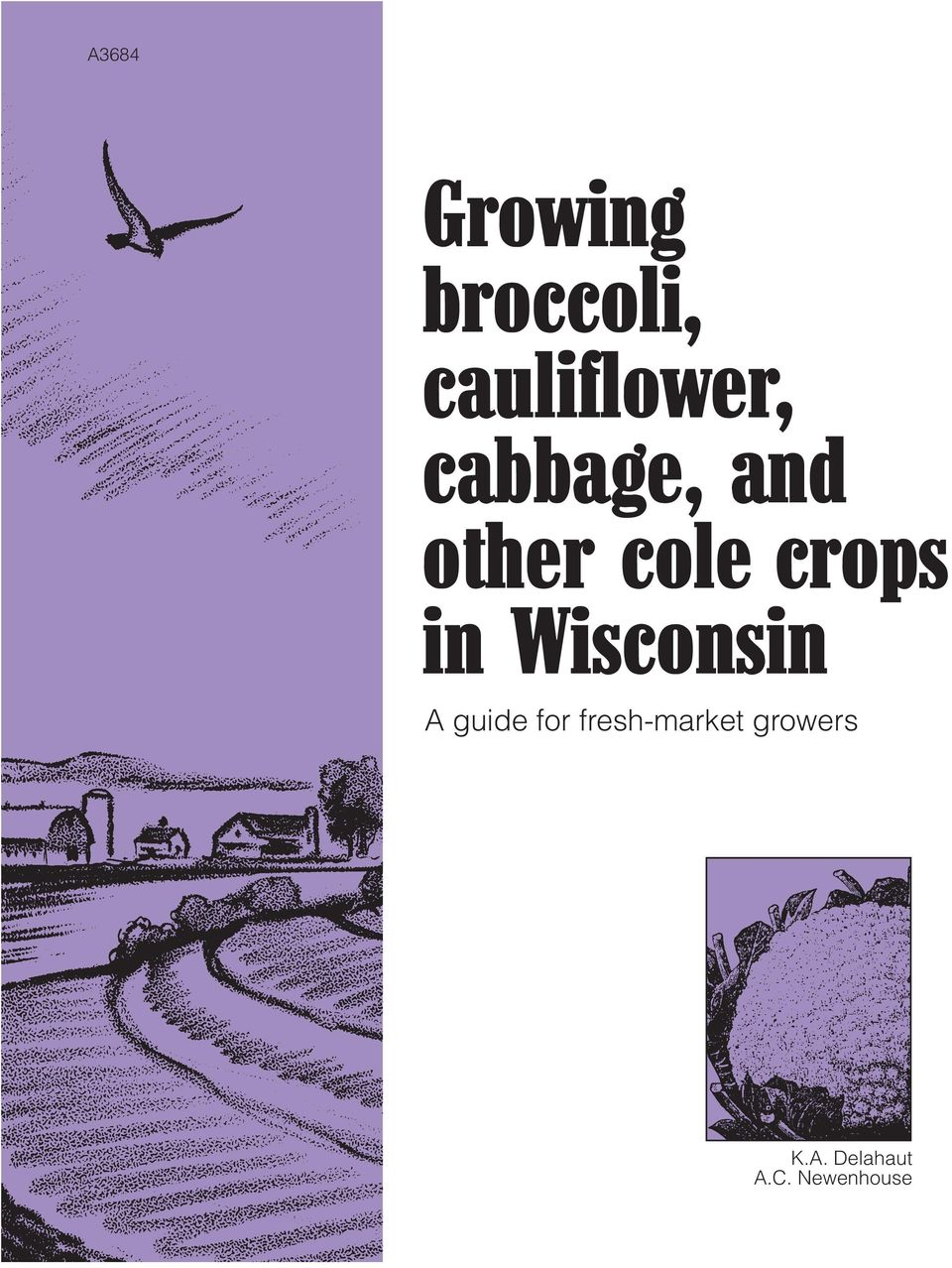 cole crops in Wisconsin A guide for