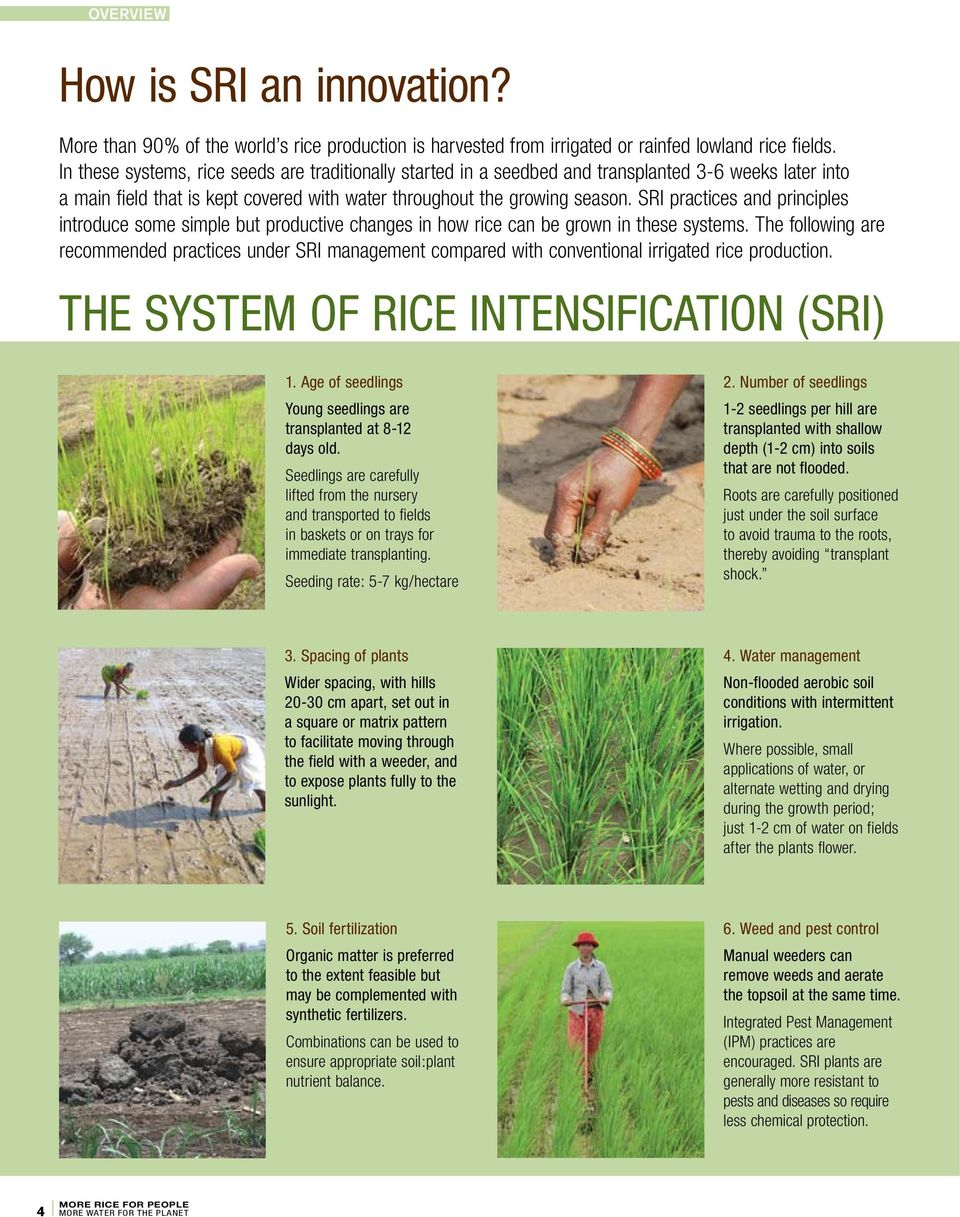 SRI practices and principles introduce some simple but productive changes in how rice can be grown in these systems.