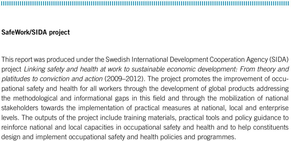 The project promotes the improvement of occupational safety and health for all workers through the development of global products addressing the methodological and informational gaps in this field