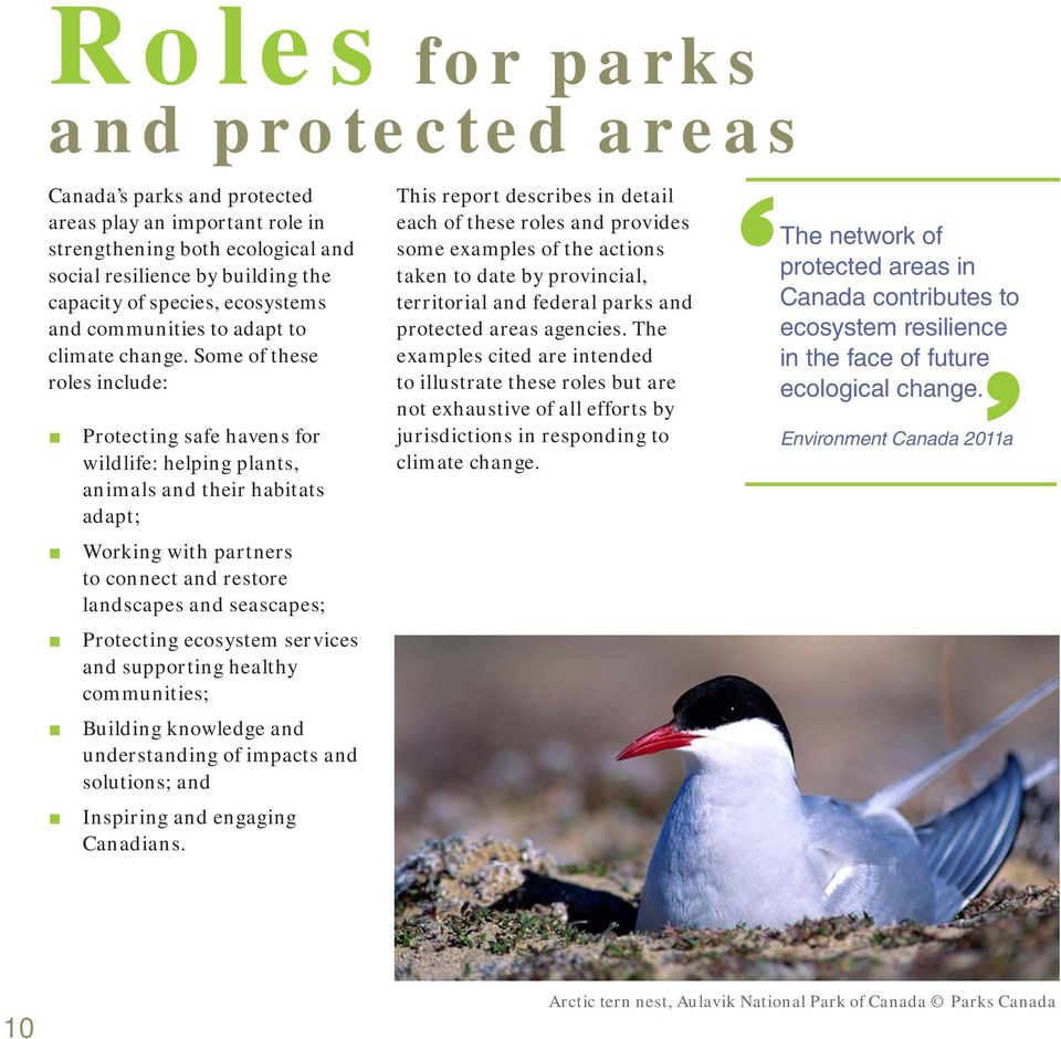 Some of these roles include: Protecting safe havens for wildlife: helping plants, animals and their habitats adapt; Working with partners to connect and restore landscapes and seascapes; Protecting