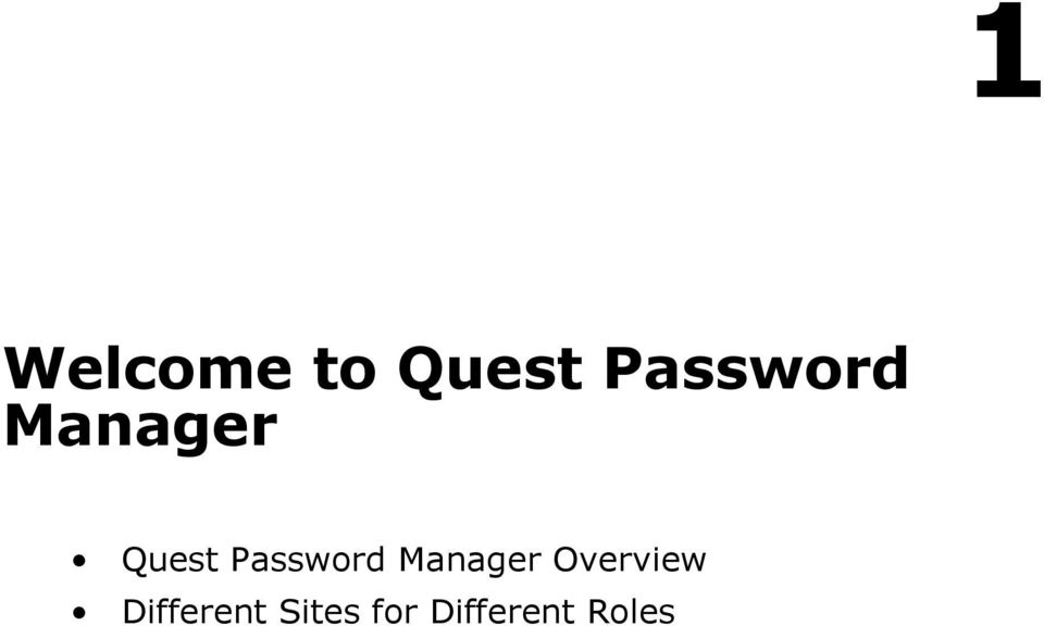 Password Manager Overview