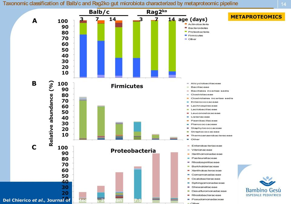 pipeline 14 METAPROTEOMICS Del Chierico et al.