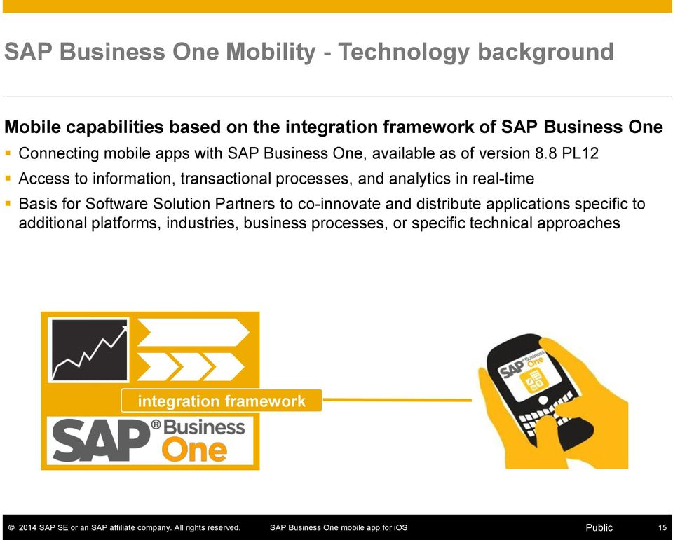 8 PL12 Access to information, transactional processes, and analytics in real-time Basis for Software Solution Partners
