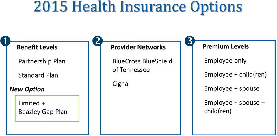 Beazley Gap Plan BlueCross BlueShield of Tennessee Cigna Employee