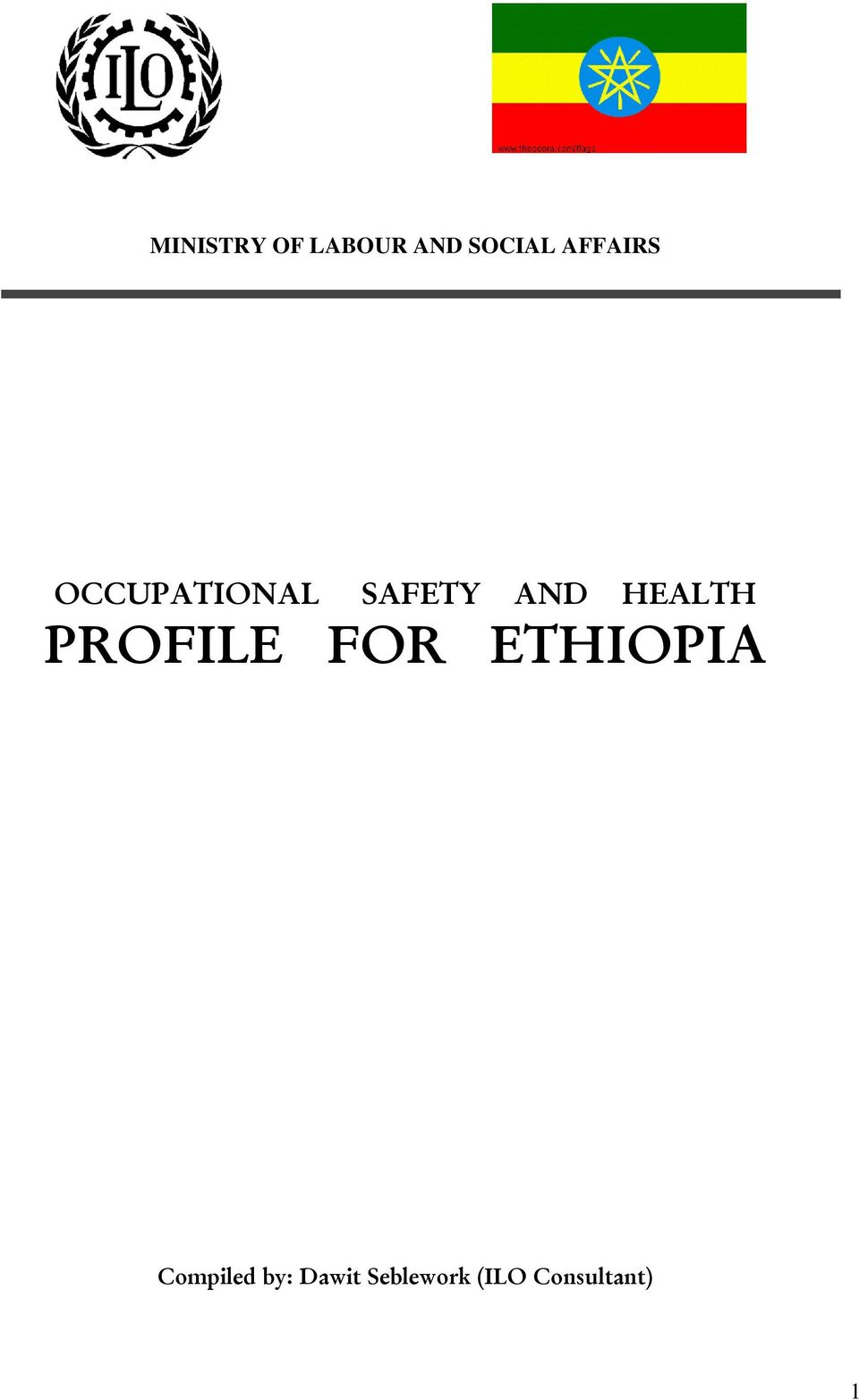 ethiopian constitution pdf amharic version self study programme