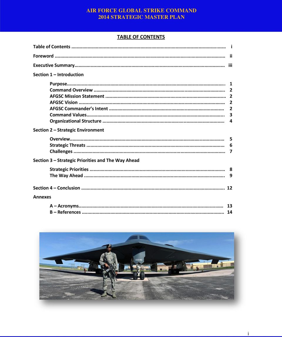 .. 4 Section 2 Strategic Environment Overview... 5 Strategic Threats... 6 Challenges.