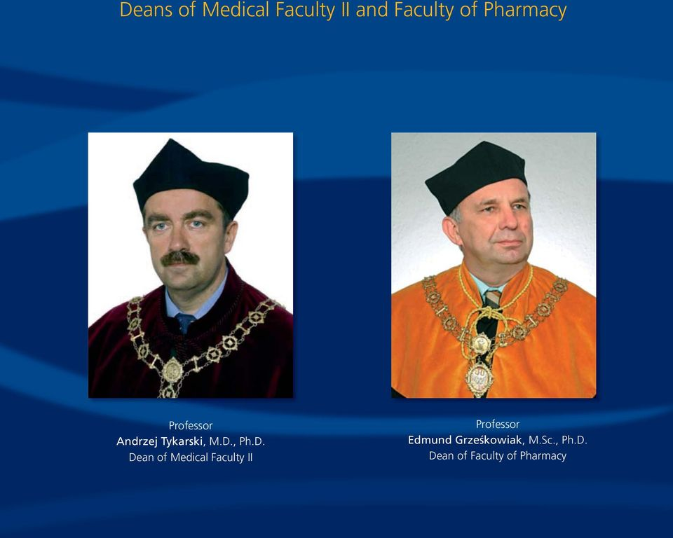 Dean of Medical Faculty II Professor Edmund