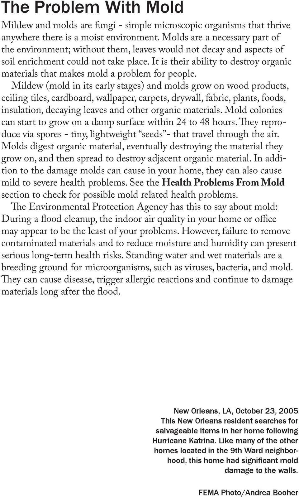 It is their ability to destroy organic materials that makes mold a problem for people.