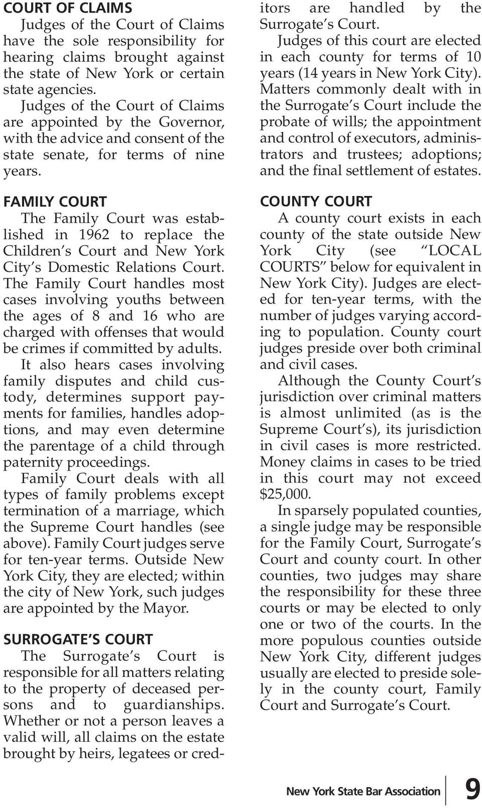 FAMILY COURT The Family Court was established in 1962 to replace the Children s Court and New York City s Domestic Relations Court.