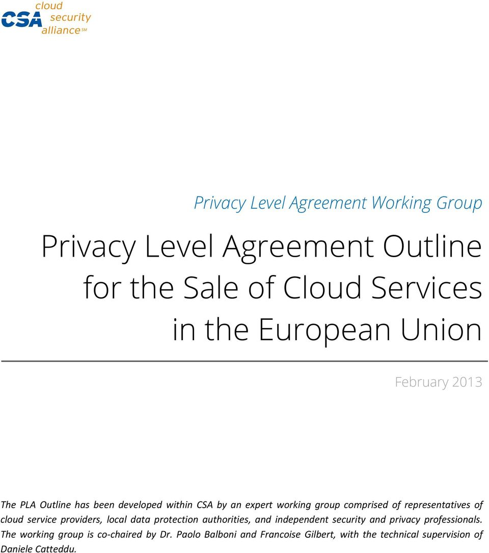 representatives of cloud service providers, local data protection authorities, and independent security and privacy