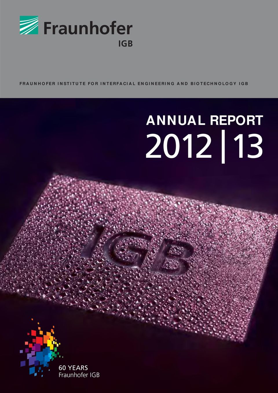 BIOTECHNOLOGY IGB ANNUAL
