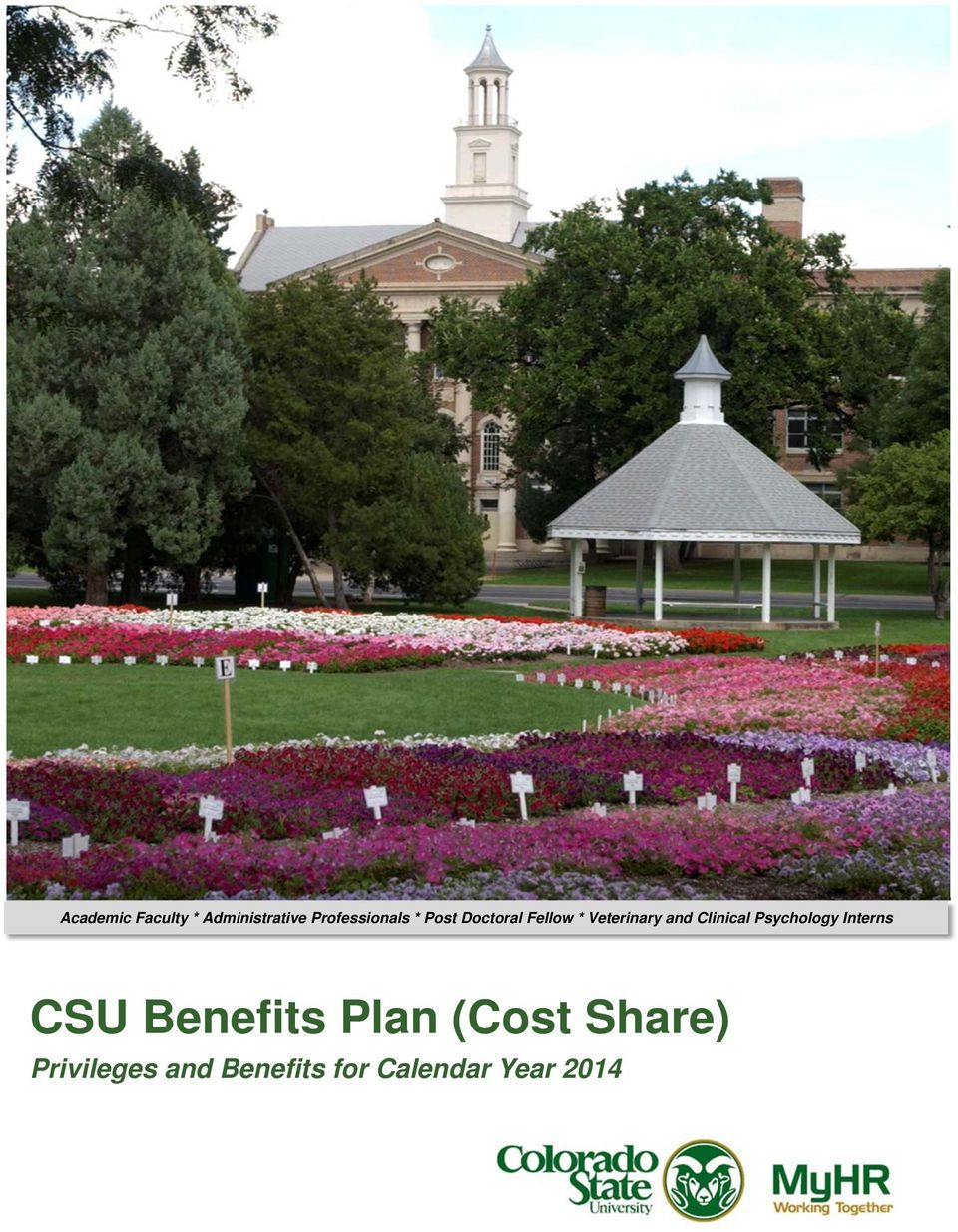Psychology Interns CSU Benefits Plan (Cost Share)