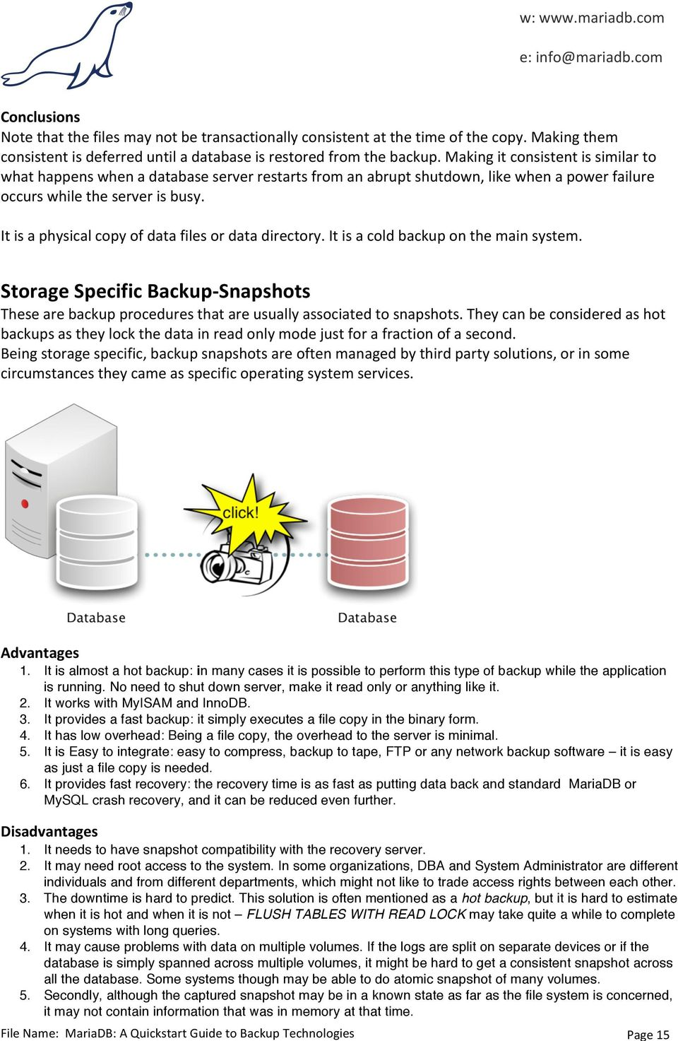 It is a physical copy of data files or data directory. It is a cold backup on the main system. Storage Specific Backup- Snapshots These are backup procedures that are usually associated to snapshots.