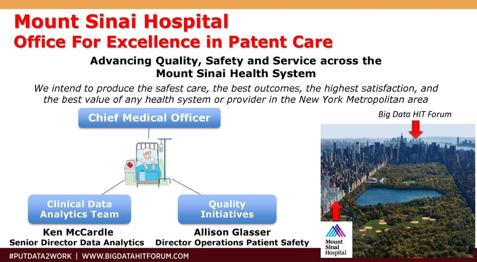 any health system or provider in the New York Metropolitan area Chief Medical Officer Big Data HIT Forum Clinical Data