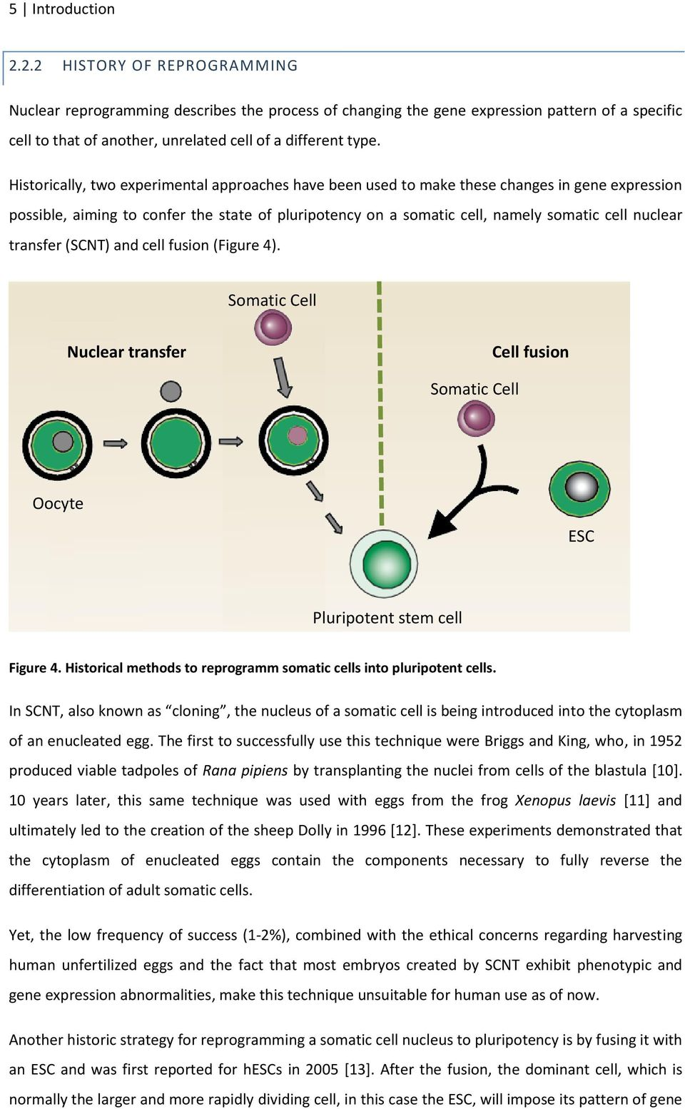Historically, two experimental approaches have been used to make these changes in gene expression possible, aiming to confer the state of pluripotency on a somatic cell, namely somatic cell nuclear