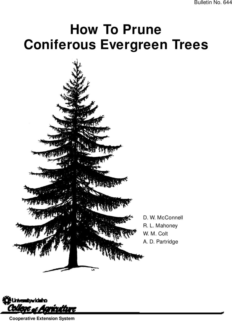 Evergreen Trees D. W. McConnell R.
