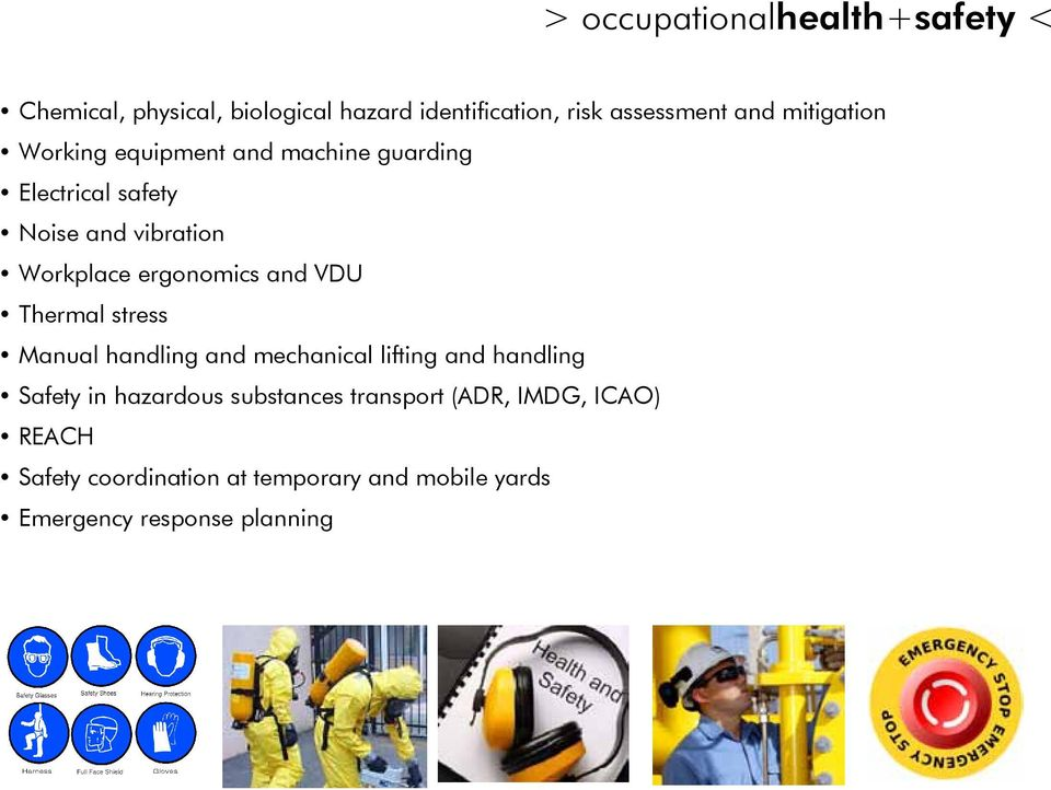 ergonomics and VDU Thermal stress Manual handling and mechanical lifting and handling Safety in hazardous