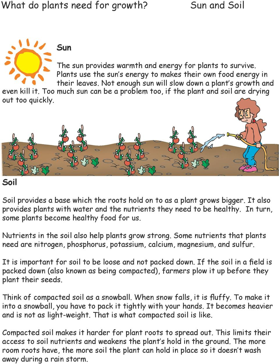Soil Soil provides a base which the roots hold on to as a plant grows bigger. It also provides plants with water and the nutrients they need to be healthy.