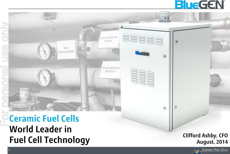 Leader in Fuel Cell