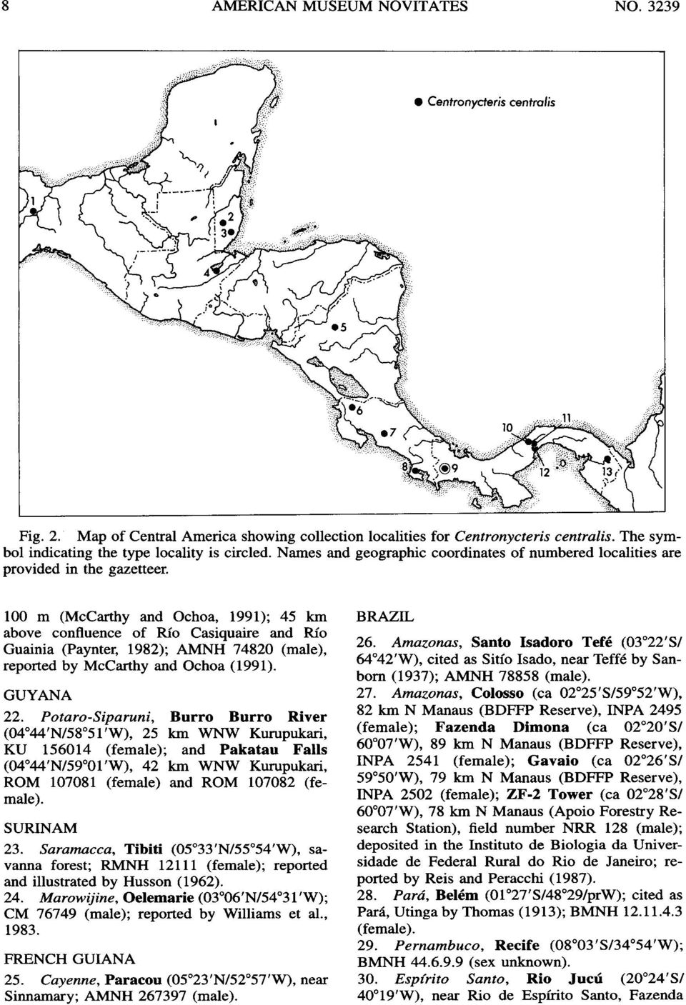100 m (McCarthy and Ochoa, 1991); 45 km above confluence of Rio Casiquaire and Rio Guainia (Paynter, 1982); AMNH 74820 (male), reported by McCarthy and Ochoa (1991). GUYANA 22.