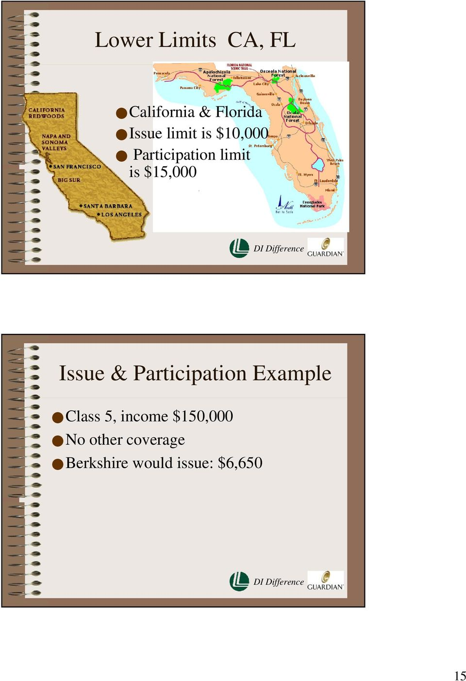 Issue & Participation Example Class 5, income