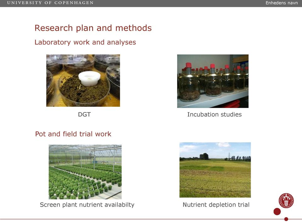 studies Pot and field trial work Screen