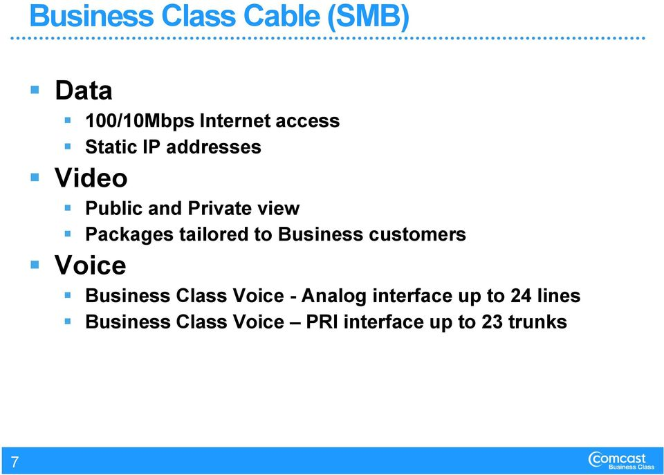 Business customers Voice Business Class Voice - Analog interface