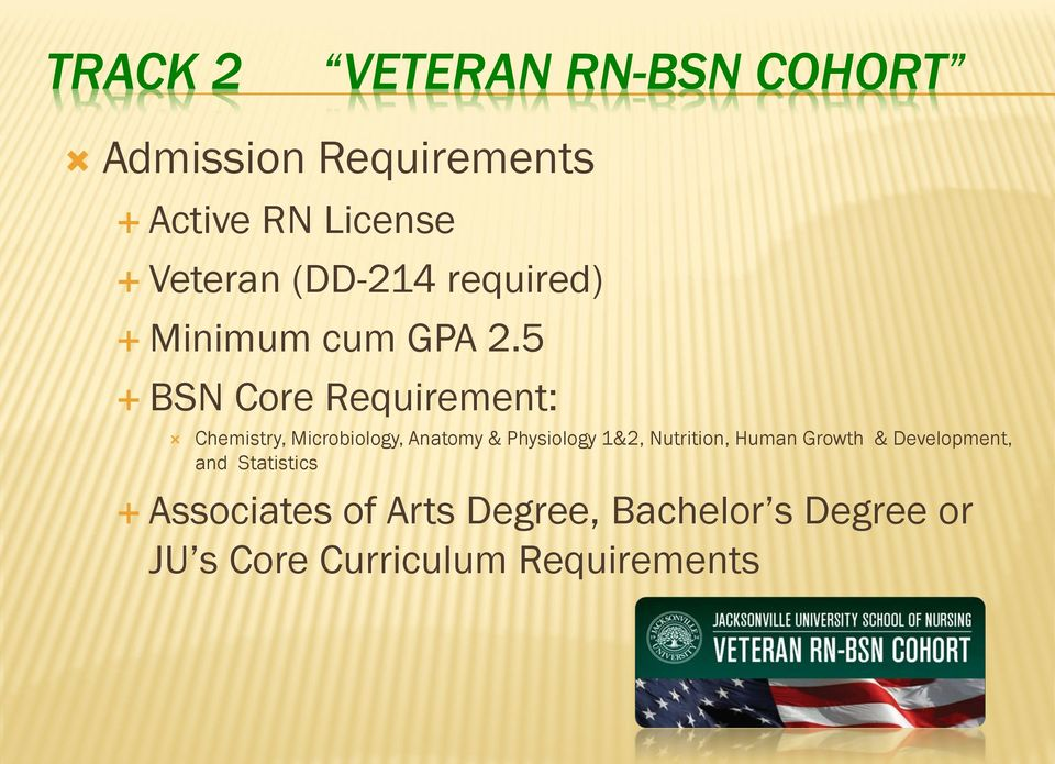 5 BSN Core Requirement: Chemistry, Microbiology, Anatomy & Physiology 1&2,