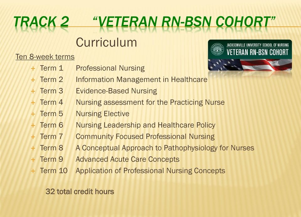 Nursing Leadership and Healthcare Policy Term 7 Community Focused Professional Nursing Term 8 A Conceptual Approach to