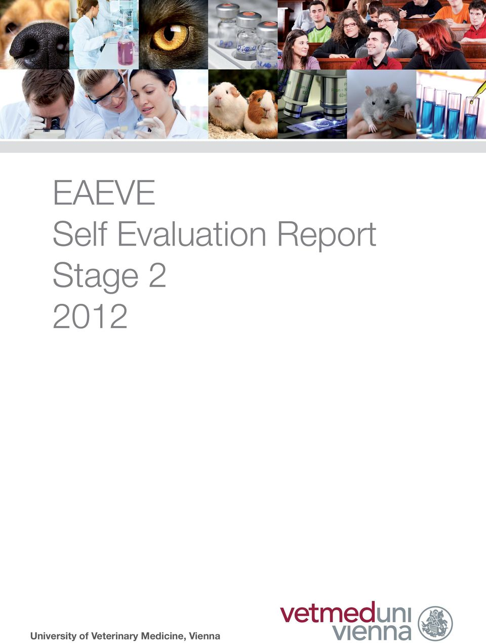 vienna) Self Evaluation Report Stage 2 2012