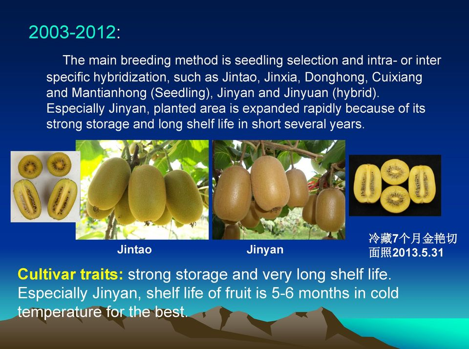 Especially Jinyan, planted area is expanded rapidly because of its strong storage and long shelf life in short several years.