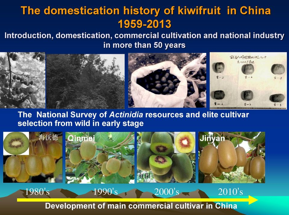 National Survey of Actinidia resources and elite cultivar selection from wild in