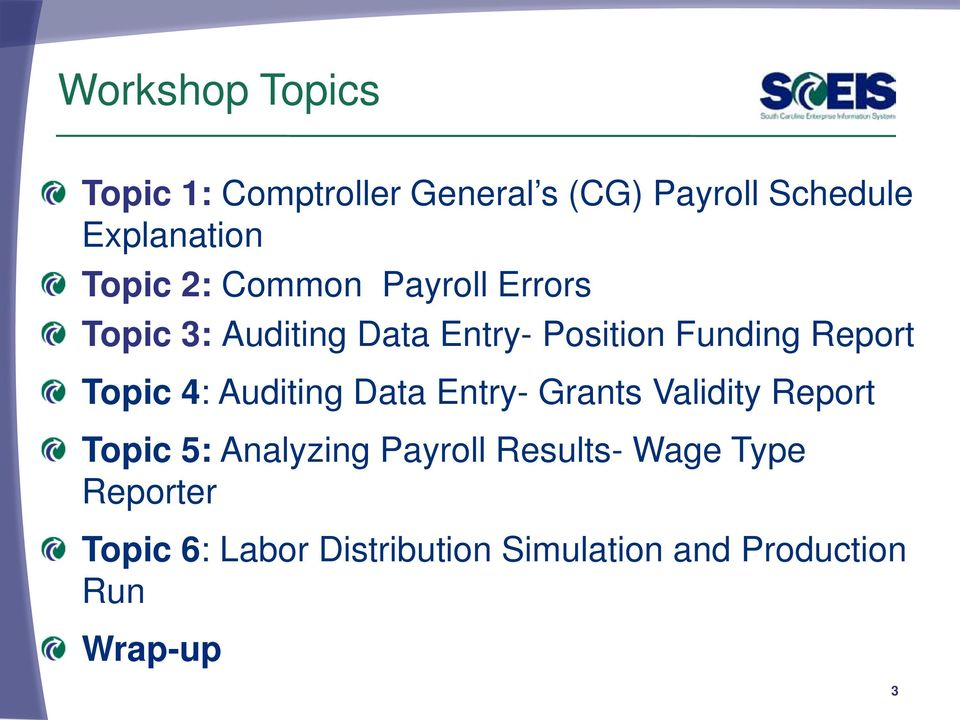 Topic 4: Auditing Data Entry- Grants Validity Report Topic 5: Analyzing Payroll