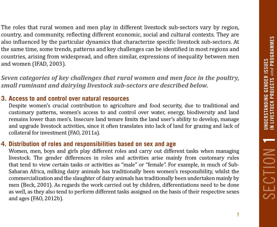 At the same time, some trends, patterns and key challenges can be identified in most regions and countries, arising from widespread, and often similar, expressions of inequality between men and women
