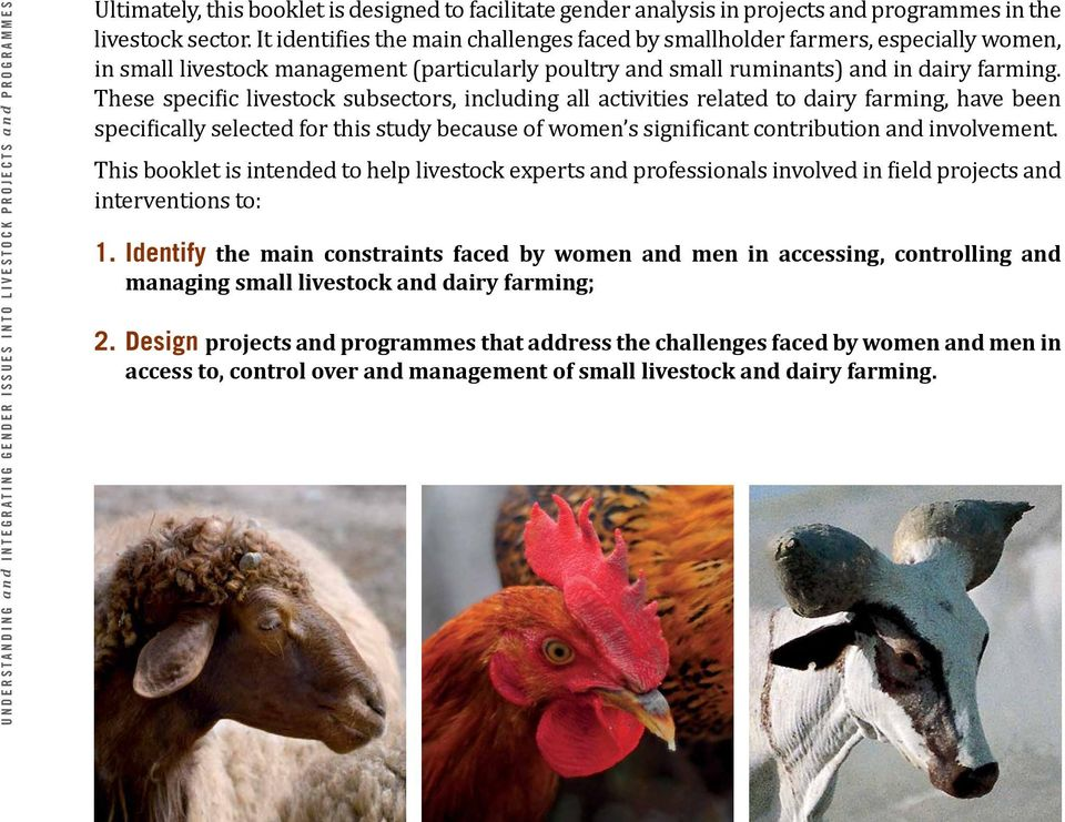These specific livestock subsectors, including all activities related to dairy farming, have been specifically selected for this study because of women s significant contribution and involvement.