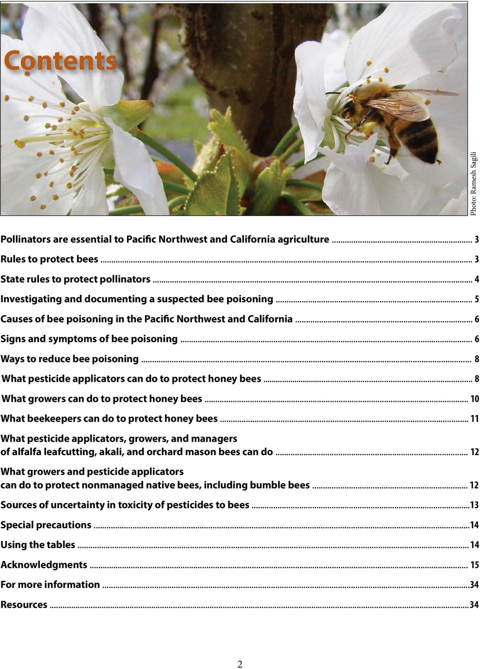 .. 6 Ways to reduce bee poisoning... 8 What pesticide applicators can do to protect honey bees... 8 What growers can do to protect honey bees... 10 What beekeepers can do to protect honey bees.