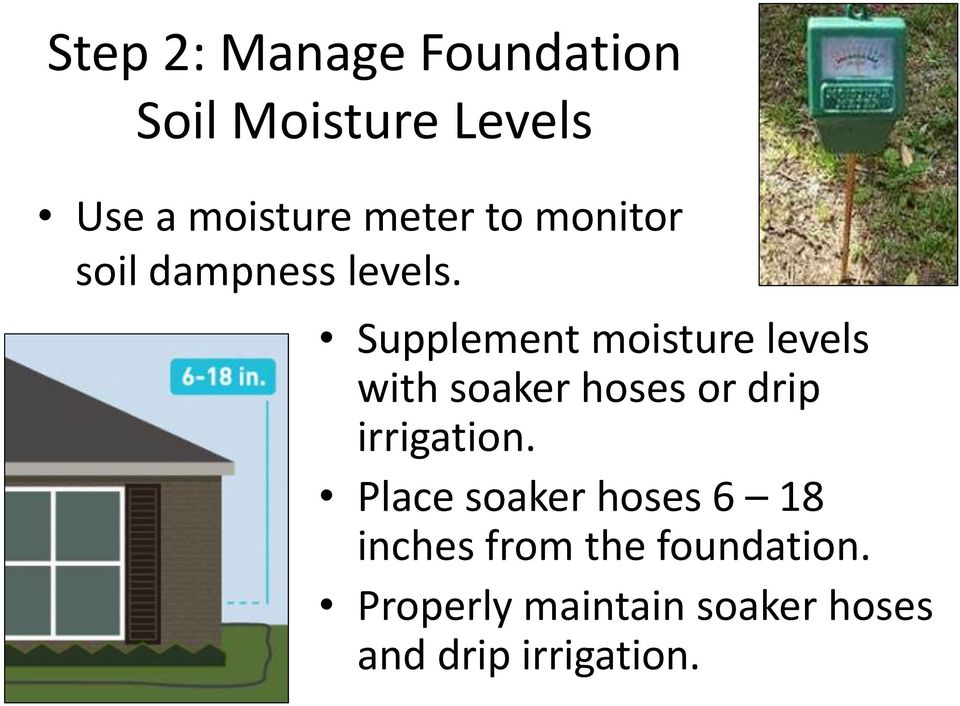 Supplement moisture levels with soaker hoses or drip irrigation.