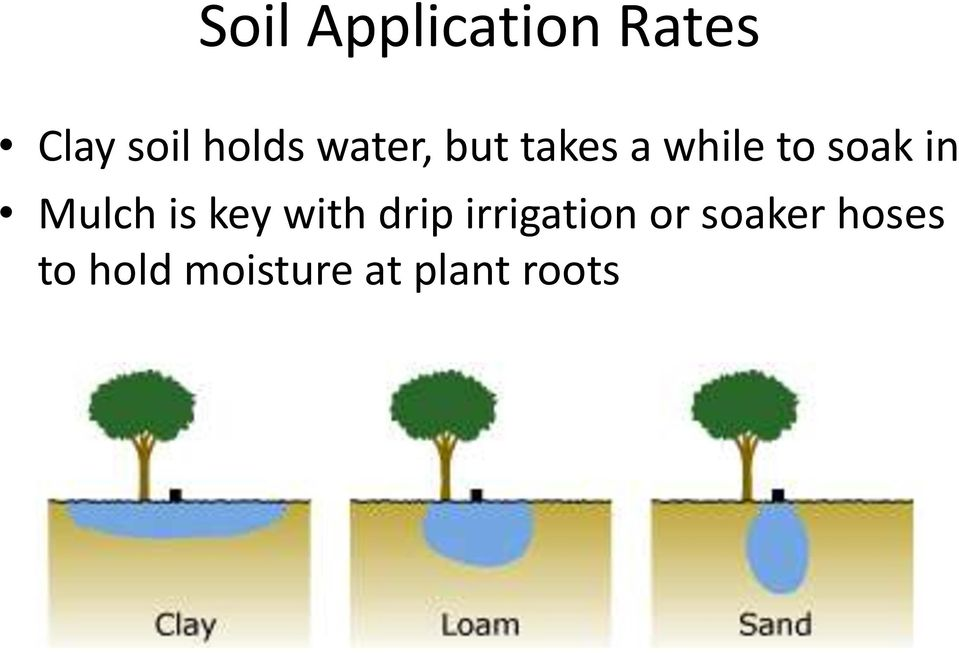 Mulch is key with drip irrigation or