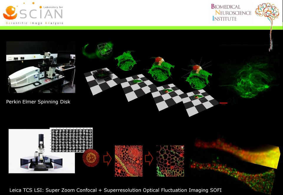 Confocal + Superresolution