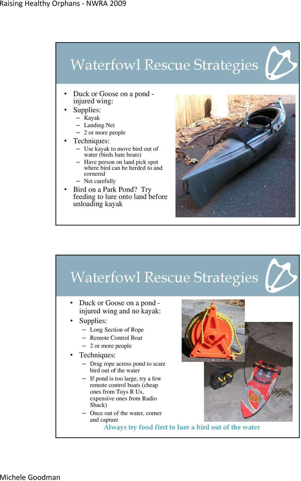 Try feeding to lure onto land before unloading kayak Waterfowl Rescue Strategies Duck or Goose on a pond - injured wing and no kayak: Supplies: Long Section of Rope Remote Control Boat 2 or