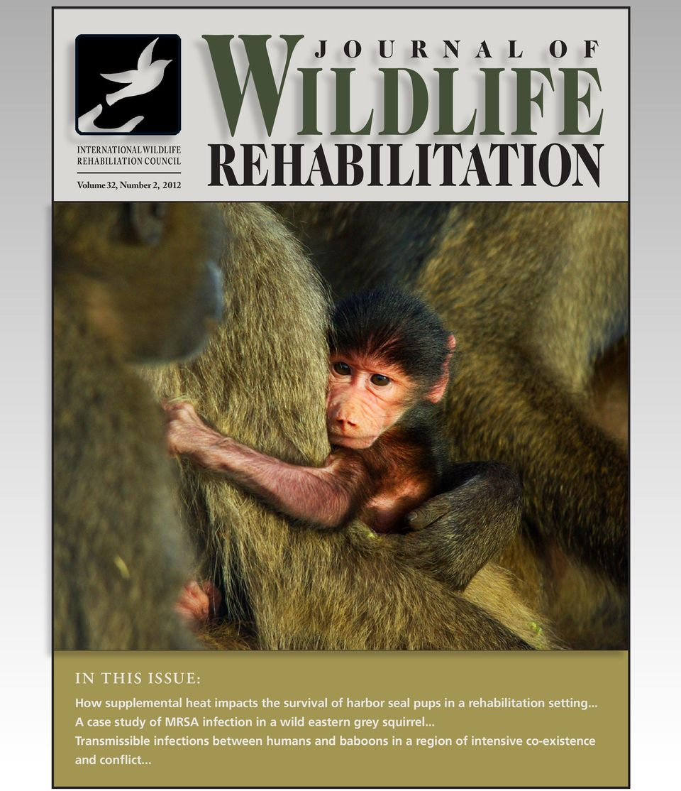 rehabilitation setting... A case study of MRSA infection in a wild eastern grey squirrel.