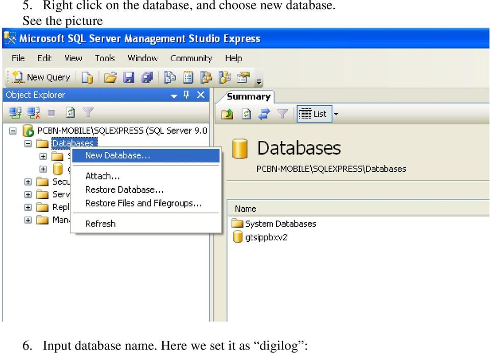 database. See the picture 6.