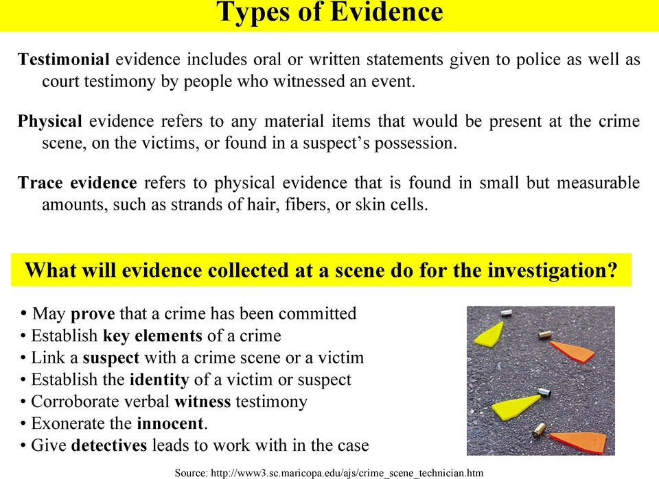 Trace evidence refers to physical evidence that is found in small but measurable amounts, such as strands of hair, fibers, or skin cells.