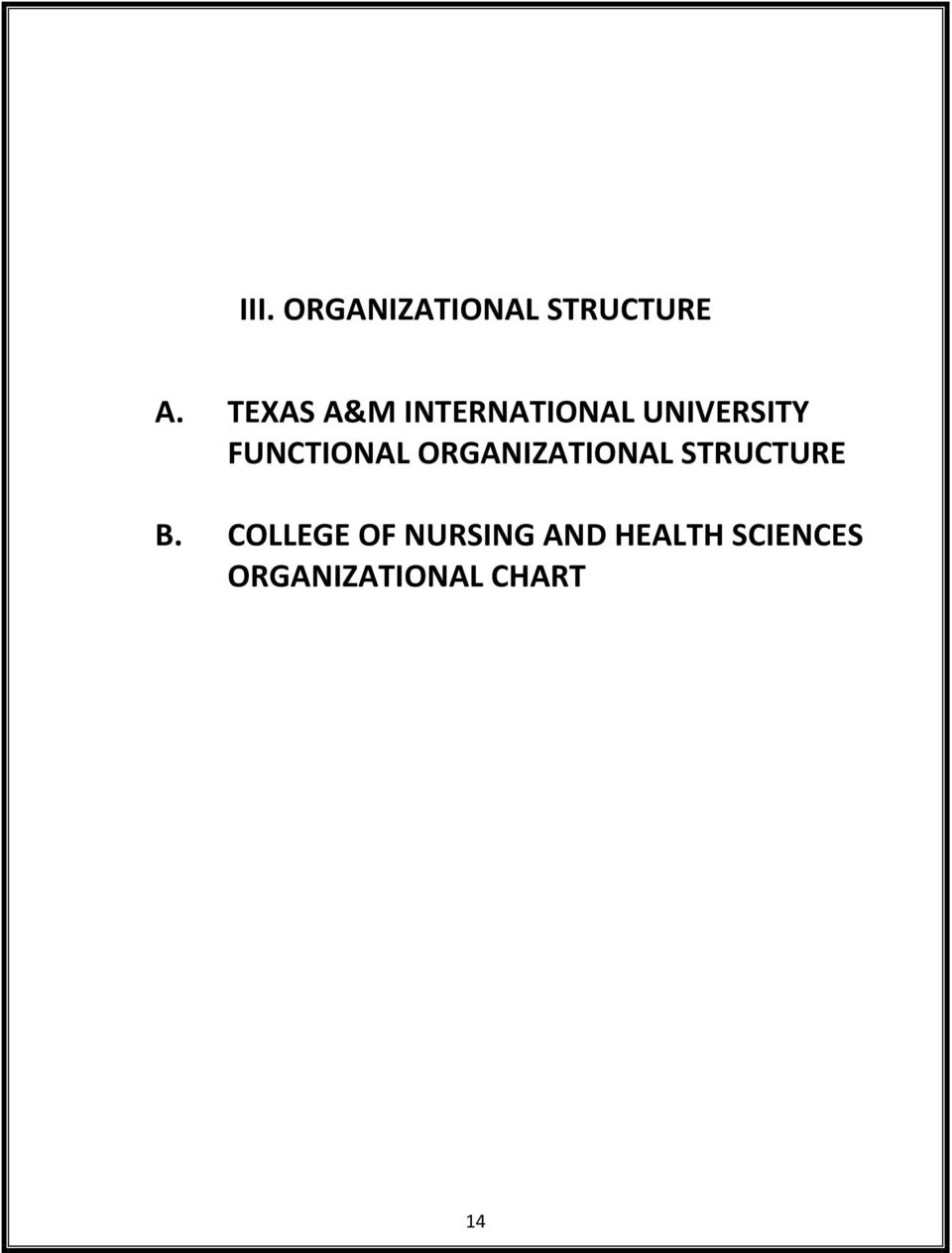 FUNCTIONAL ORGANIZATIONAL STRUCTURE B.