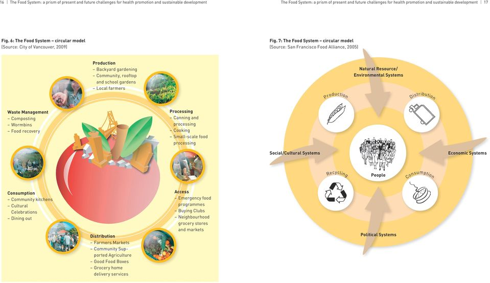 7: The Food System circular model (Source: San Francisco Food Alliance, 2005) Production Backyard gardening Community, rooftop and school gardens Local farmers Natural Resource/ Environmental Systems