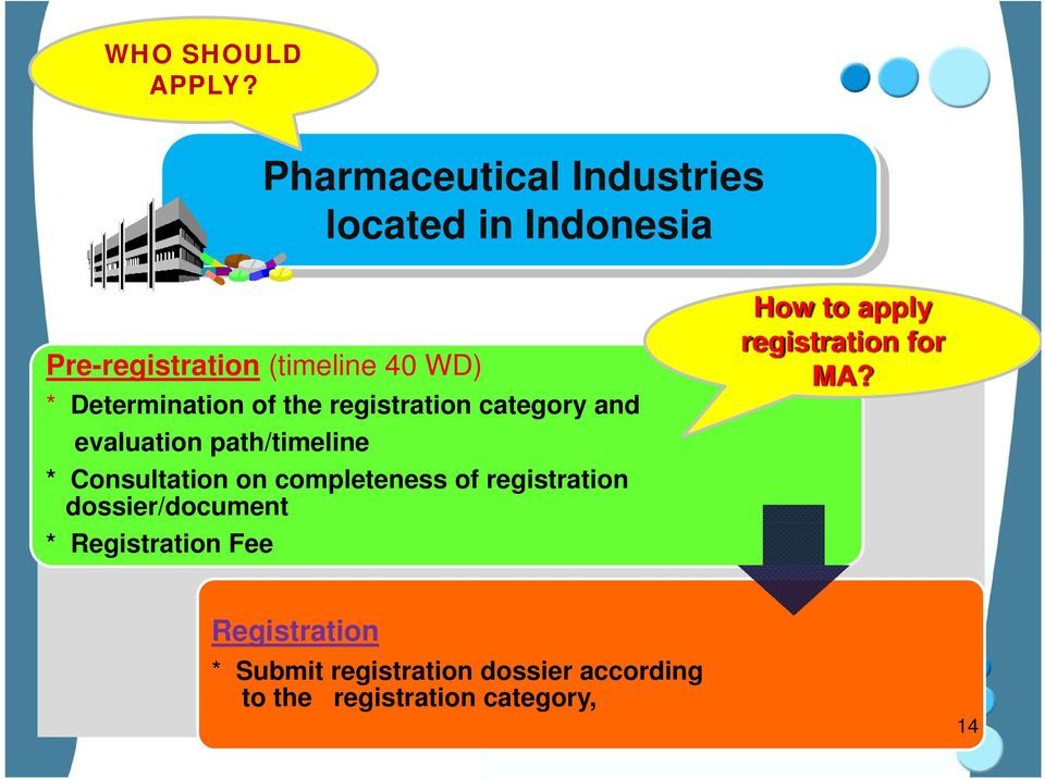 Determination of the registration category and evaluation path/timeline * Consultation on
